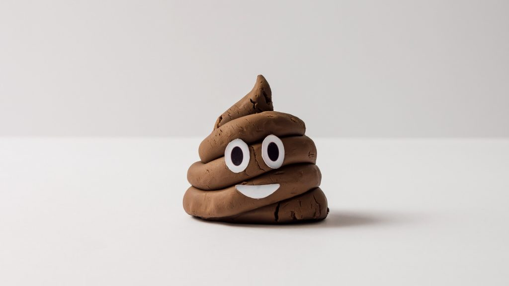 Fun Facts About Poop