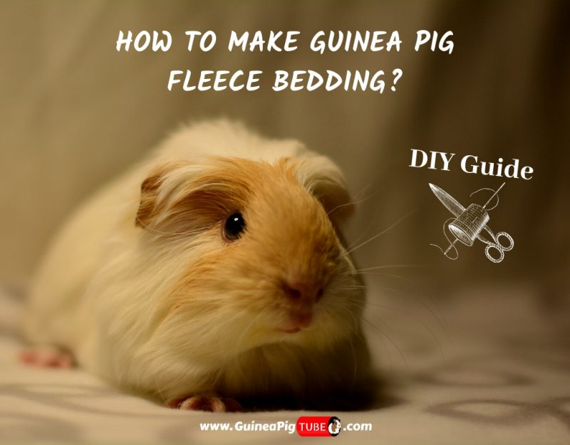 How To Make Guinea Pig Fleece Bedding_ _ DIY Guide