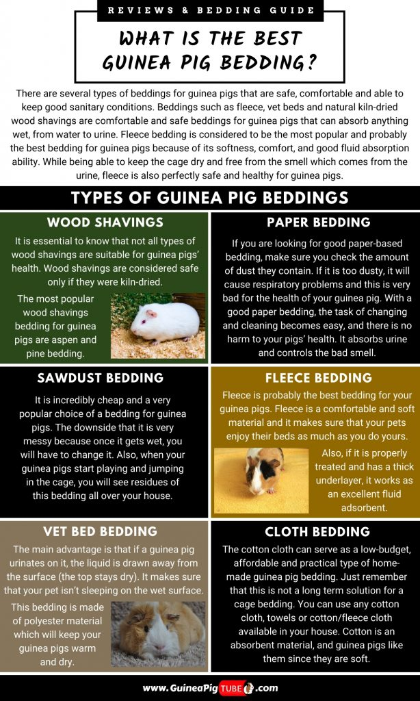 Types of Guinea Pig Beddings_2