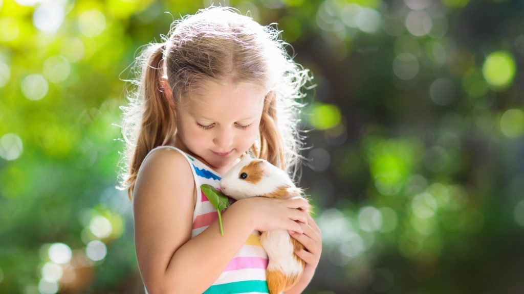 Guinea Pigs are Great for Children