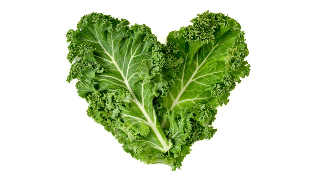Is Kale Good for Guinea Pigs Health Benefits
