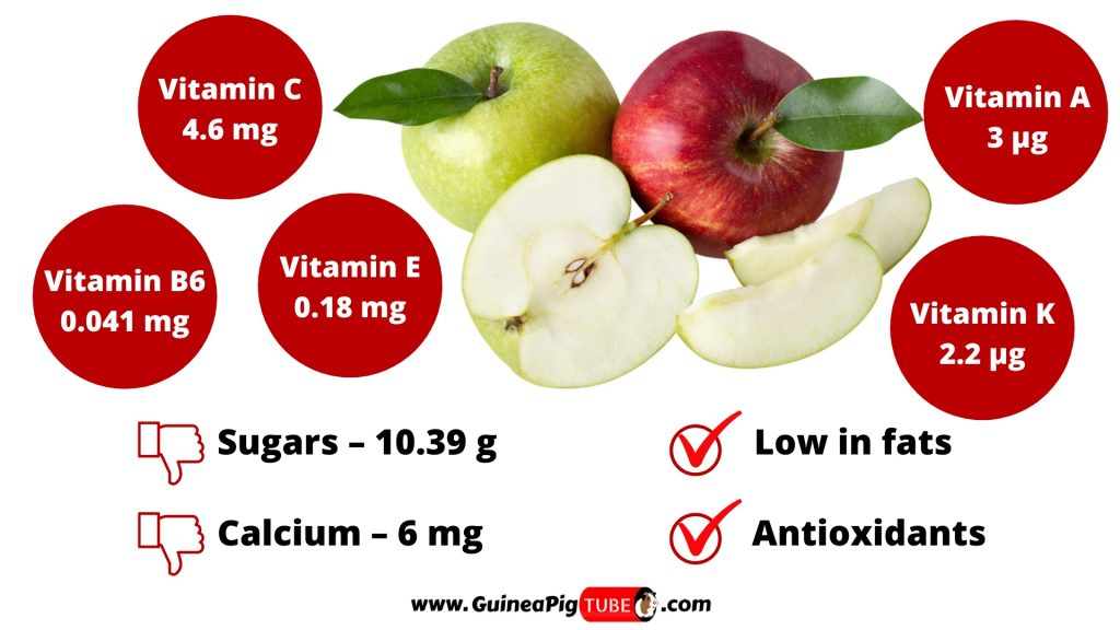Nutrition Facts of Apples for Guinea Pigs