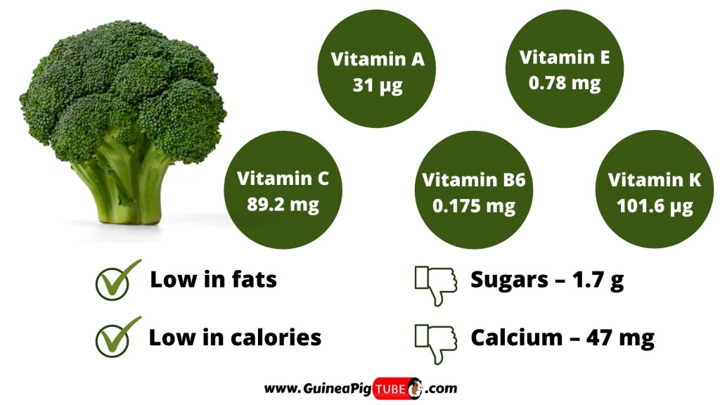 Nutrition Facts of Broccoli for Guinea Pigs