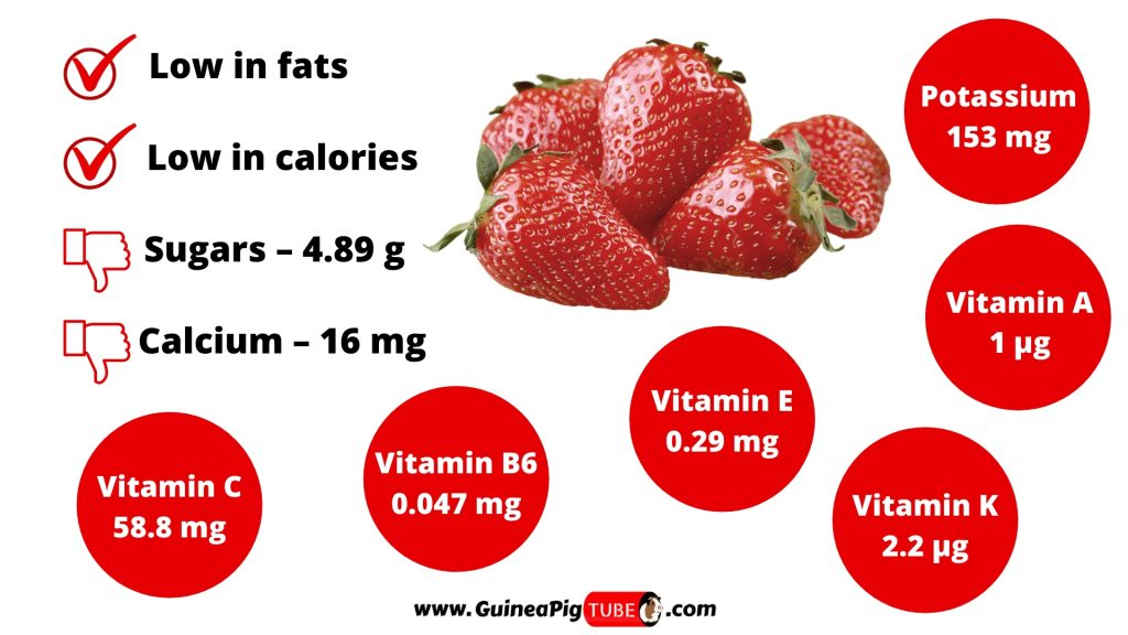 Nutrition Facts of Strawberries for Guinea Pigs