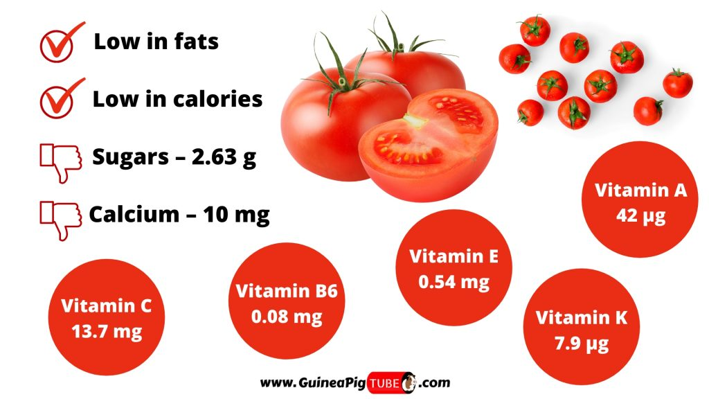 Nutrition Facts of Tomatoes for Guinea Pigs