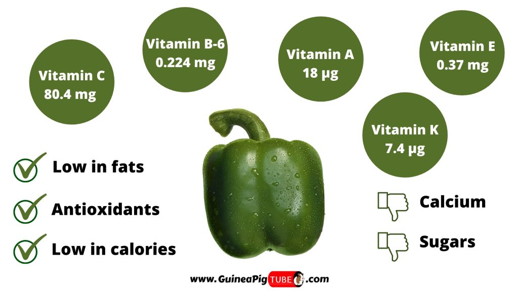 Nutrition Facts of Green Peppers for Guinea Pigs