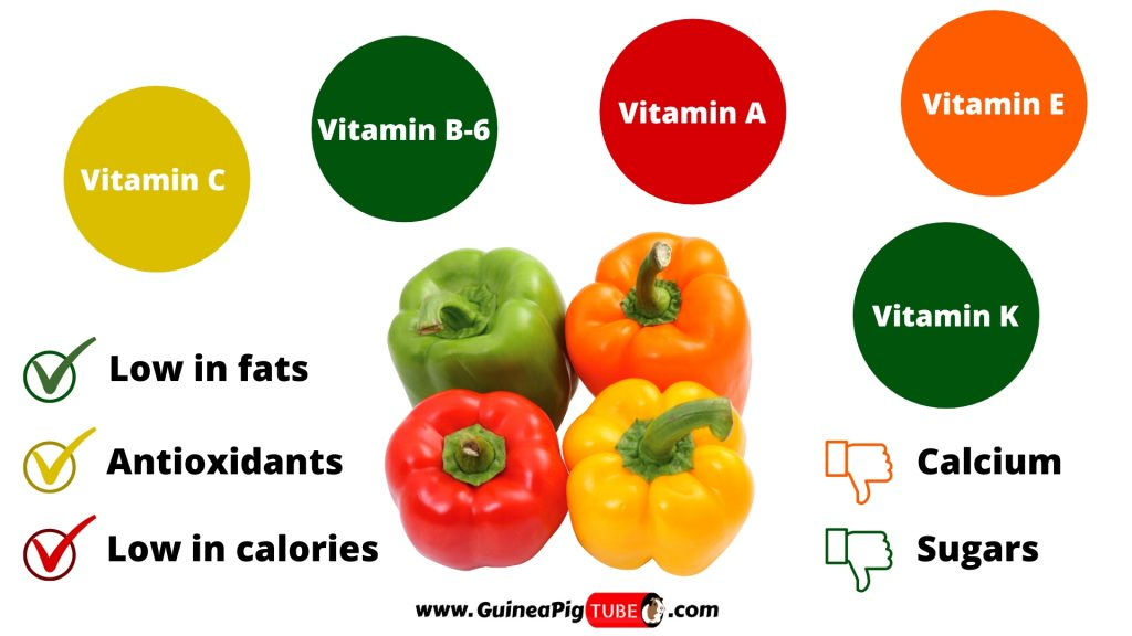 Nutrition Facts of Peppers for Guinea Pigs