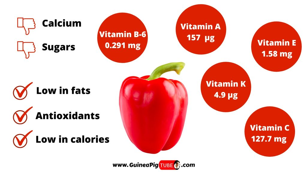 Nutrition Facts of Red Peppers for Guinea Pigs