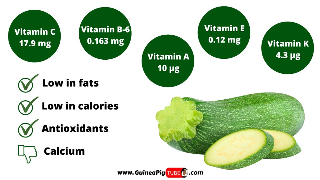 Nutrition Facts of Zucchini for Guinea Pigs