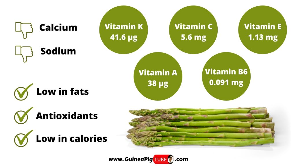 Nutrition Facts of Asparagus for Guinea Pigs