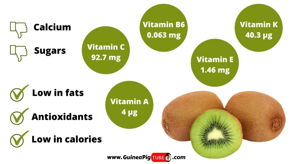 Nutrition Facts of Kiwi for Guinea Pigs