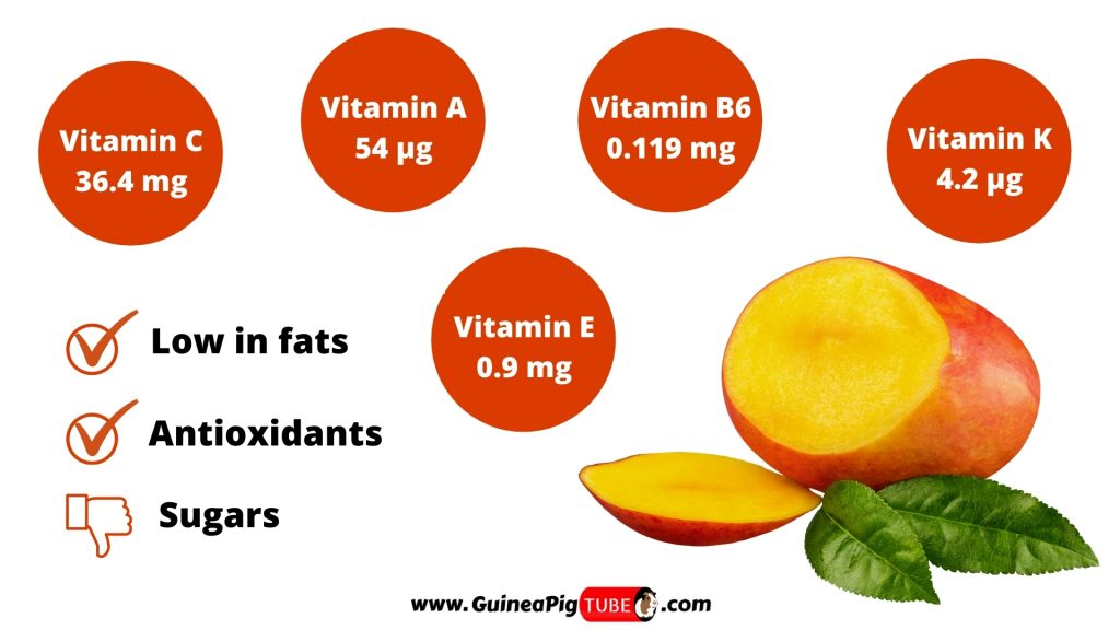 Nutrition Facts of Mango for Guinea Pigs