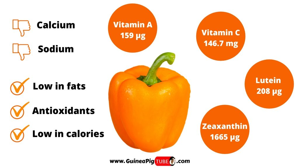 Nutrition Facts of Orange Peppers for Guinea Pigs