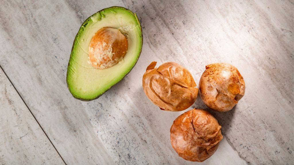 Can Guinea Pigs Eat Avocado Pit Avocado Seed