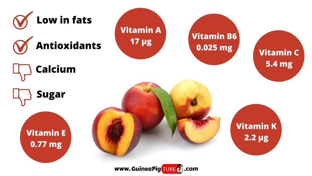 Nutrition Facts of Nectarines for Guinea Pigs