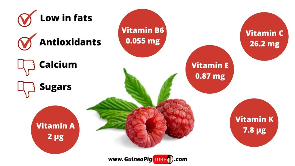 Nutrition Facts of Raspberries for Guinea Pigs