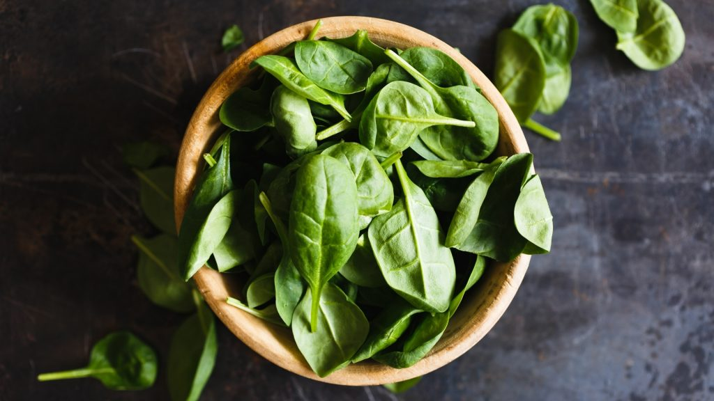 Serving Size and Frequency of Basil for Guinea Pigs