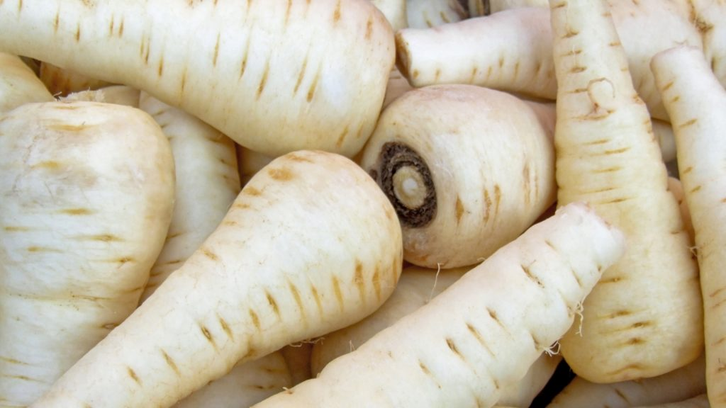 Health Benefits of Guinea Pigs Eating Parsnips