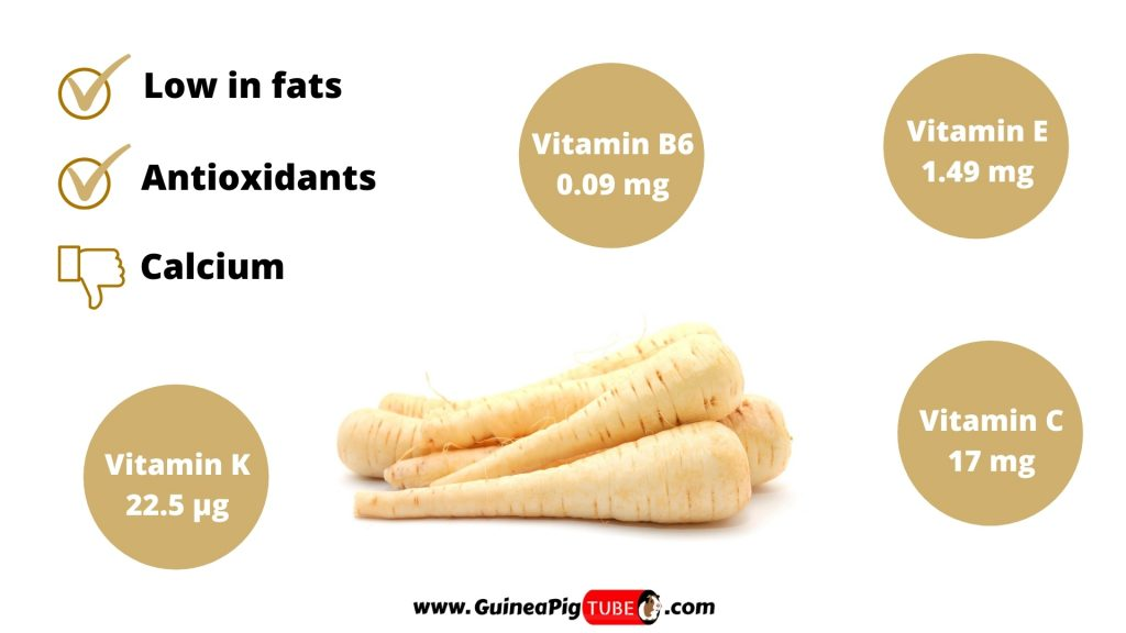 Nutrition Facts of Parsnip for Guinea Pigs